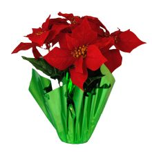 Christmas at Winterland WL-5FL-POINSETTIA