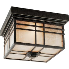 Bronze Toned Outdoor Ceiling Lights