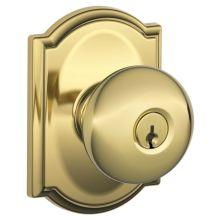 Schlage F62 Cam Bir Front Door Handleset Build Com
