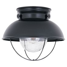 Black Outdoor Ceiling Lights