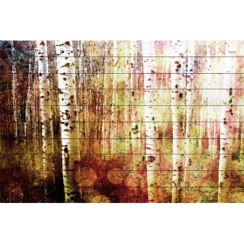 Parvez Taj 13 38 Ww 45 Art Print On White Pine Wood