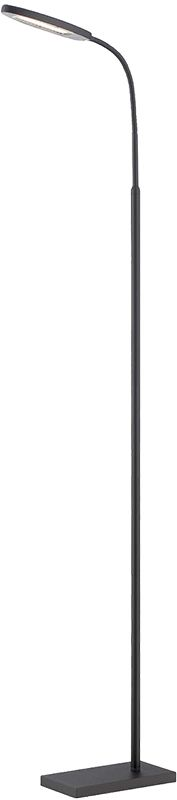 Lite Source LS-82488 Kairi 1 Light LED Arc Floor Lamp