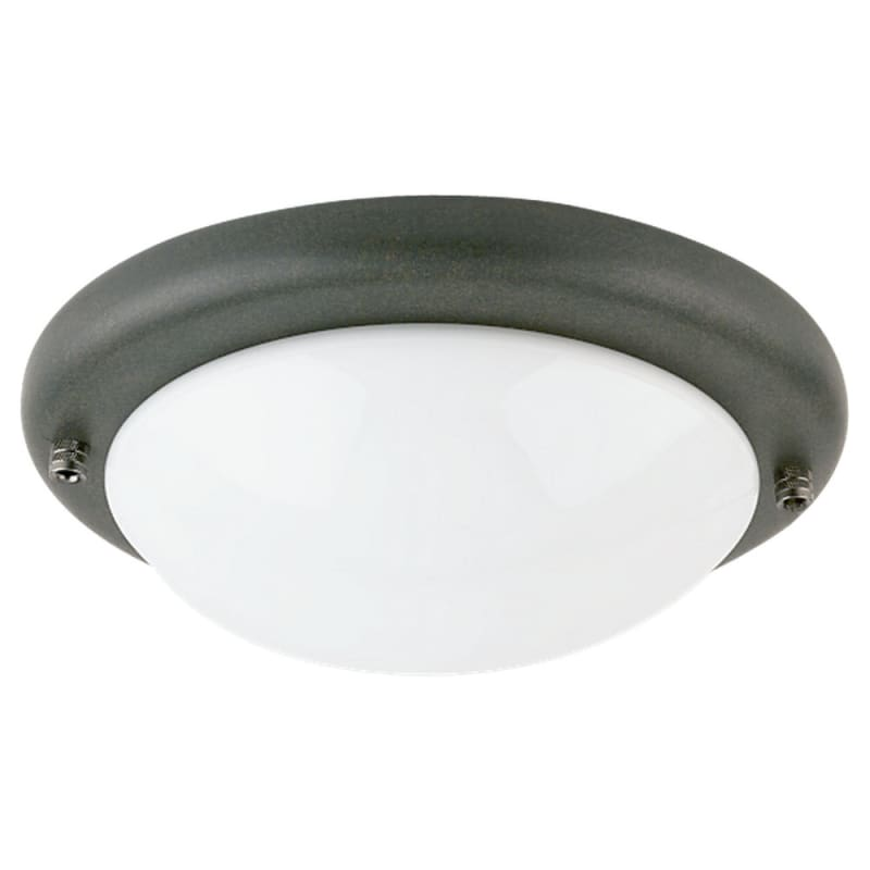 sea gull lighting 16048. Black Bedroom Furniture Sets. Home Design Ideas
