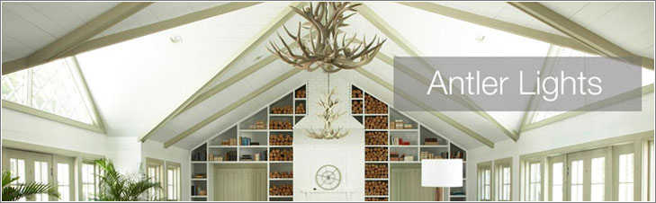 Shop all Antler Lighting on Build.com!